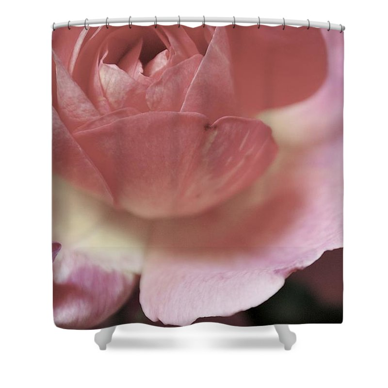 Flowers Shower Curtain featuring the photograph Tranquility by Donna Shahan