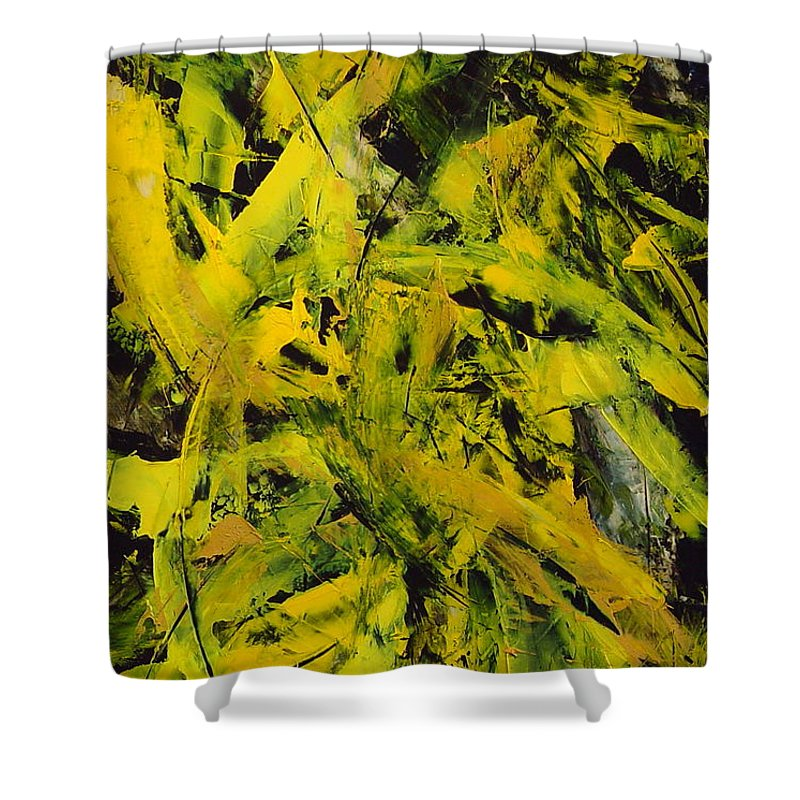 Abstract Shower Curtain featuring the painting Transitions Vi by Dean Triolo