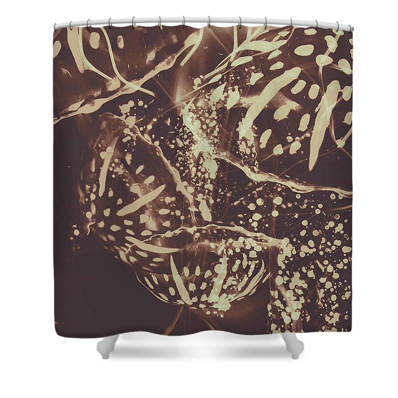 Fish Shower Curtain featuring the photograph Translucent Abstraction by Jorgo Photography - Wall Art Gallery