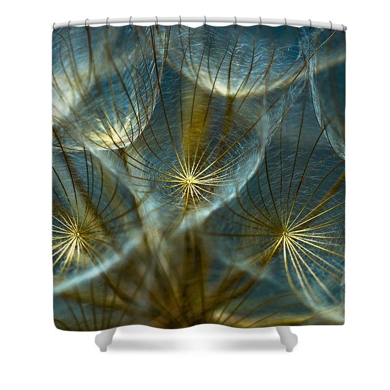Detail Shower Curtains