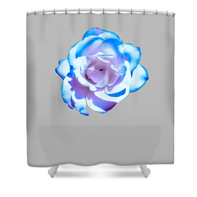 Pink Shower Curtain Featuring The Photograph Transparent Blue Rose Design By Heather Joyce Morrill