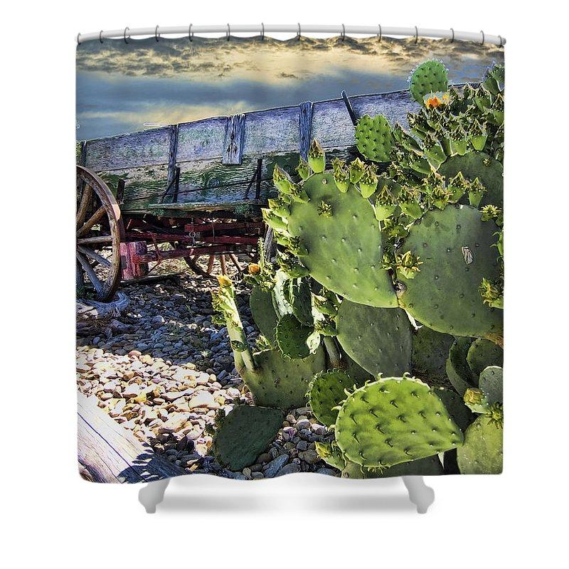 Wagon. Cactus Shower Curtain featuring the photograph Transport Of A Forgotten Era by Douglas Barnard