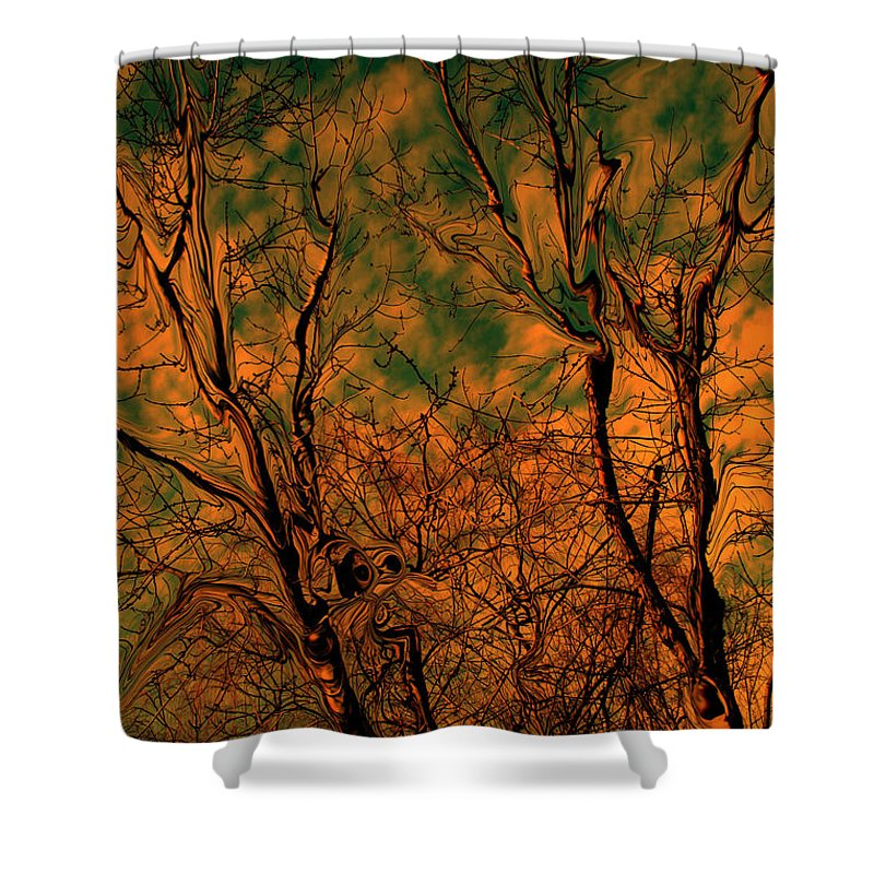 Trees Shower Curtain featuring the photograph Tree Abstract by Linda Sannuti