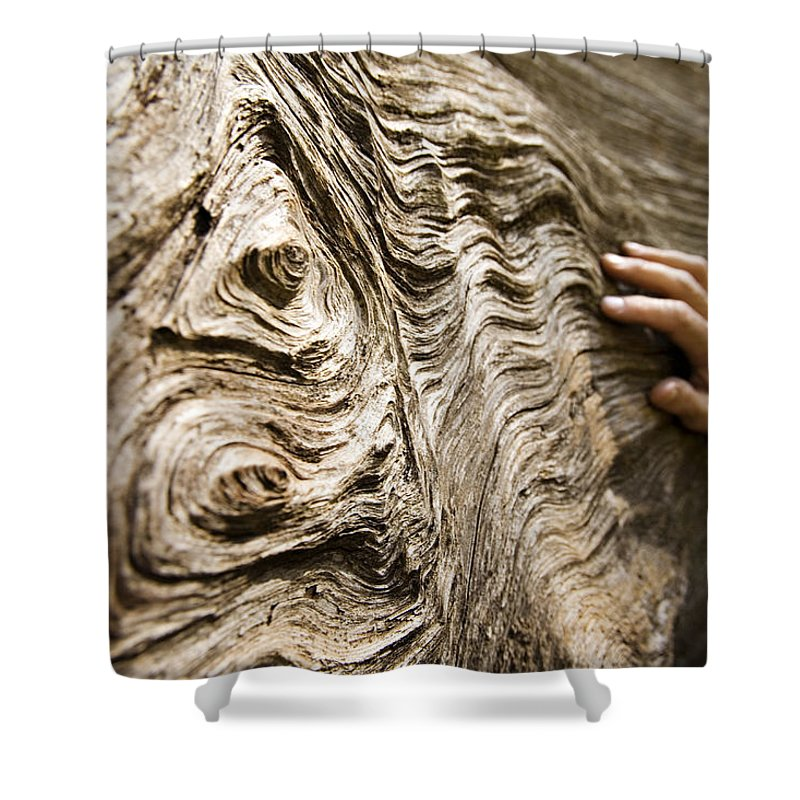 Tree Shower Curtain featuring the photograph Tree Bark And Hand by Dawn Kish