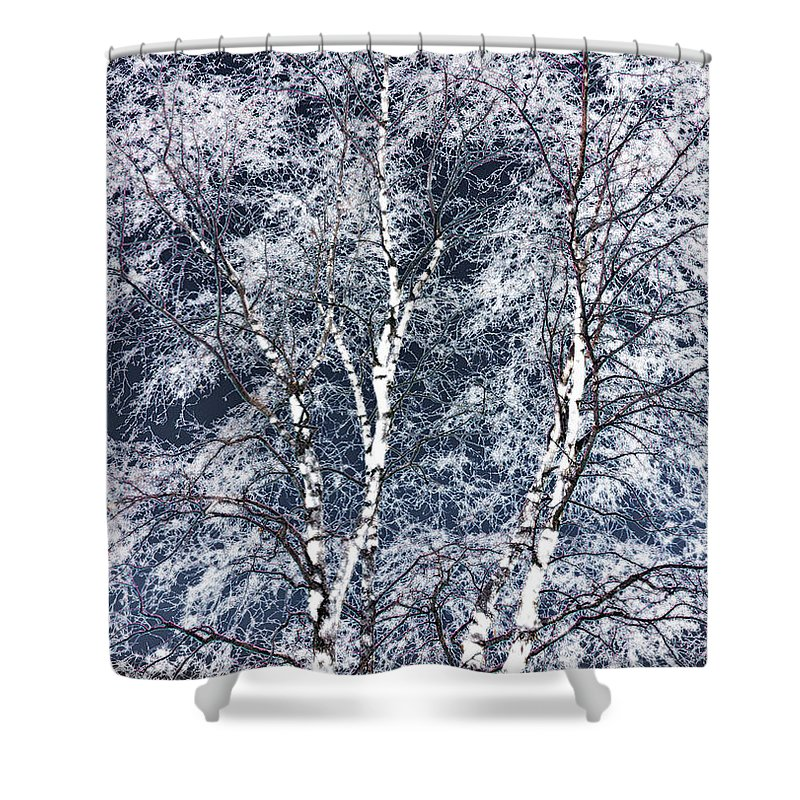 Tree Shower Curtain featuring the digital art Tree Fantasy 14 by Lee Santa