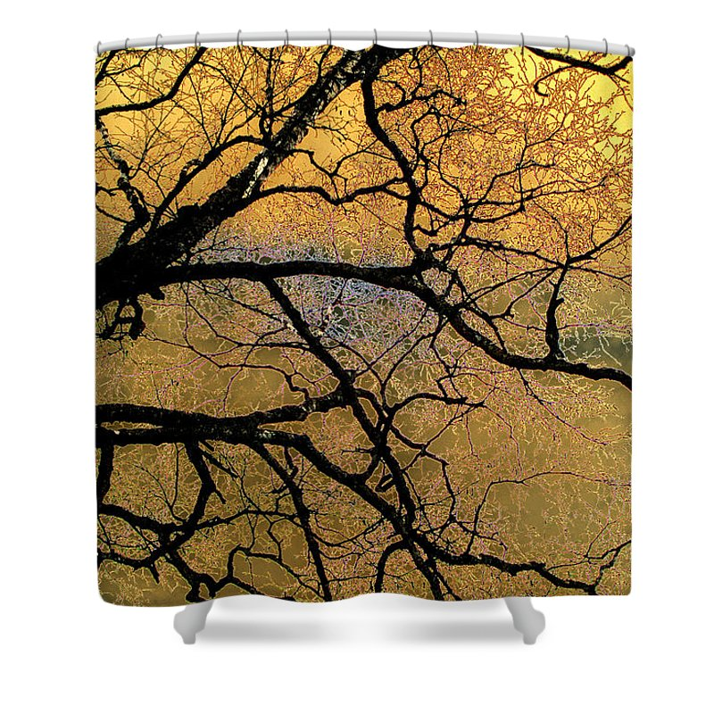 Scenic Shower Curtain featuring the photograph Tree Fantasy 7 by Lee Santa