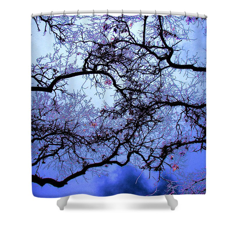 Scenic Shower Curtain featuring the photograph Tree Fantasy In Blue by Lee Santa