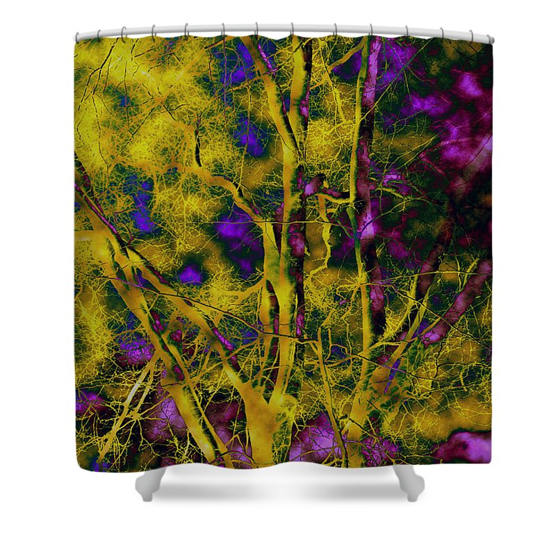 Abstract Shower Curtain featuring the photograph Tree Glow by Linda Sannuti