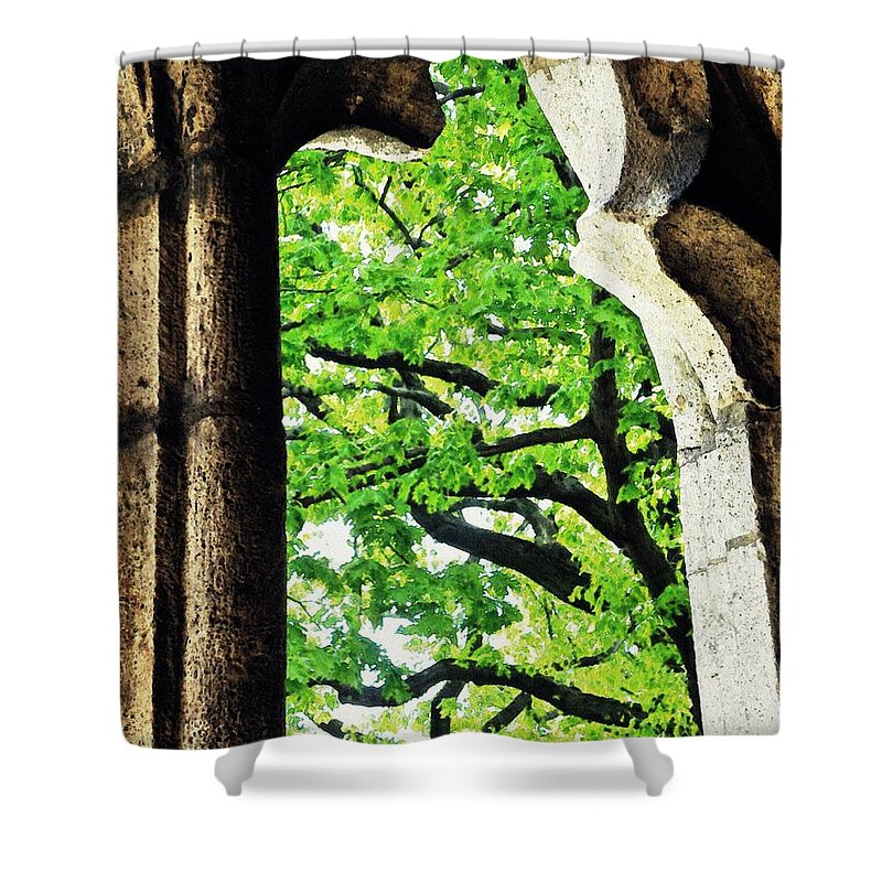 Window Shower Curtain featuring the photograph Tree In A Medieval Frame by Sarah Loft