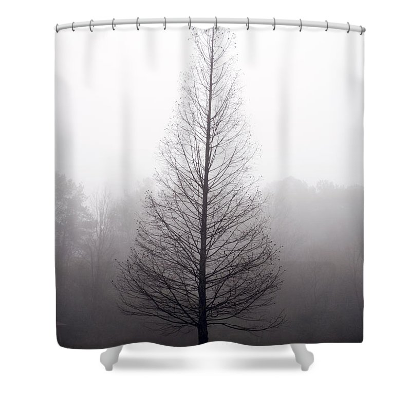 Scenic Shower Curtain featuring the photograph Tree In Fog by Ayesha Lakes