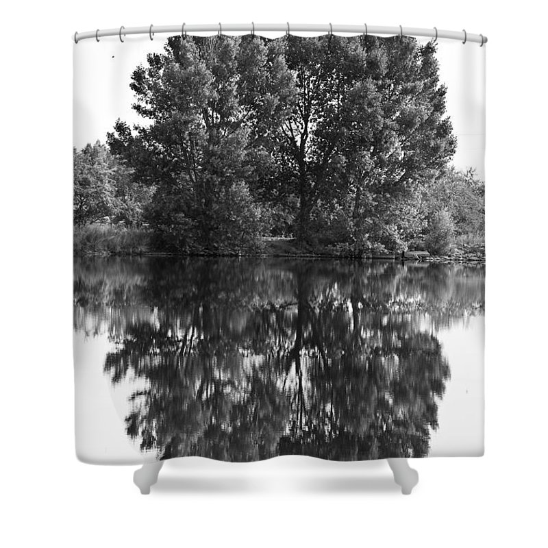 Reflections Shower Curtain featuring the photograph Tree Reflection In Black And White by James BO Insogna