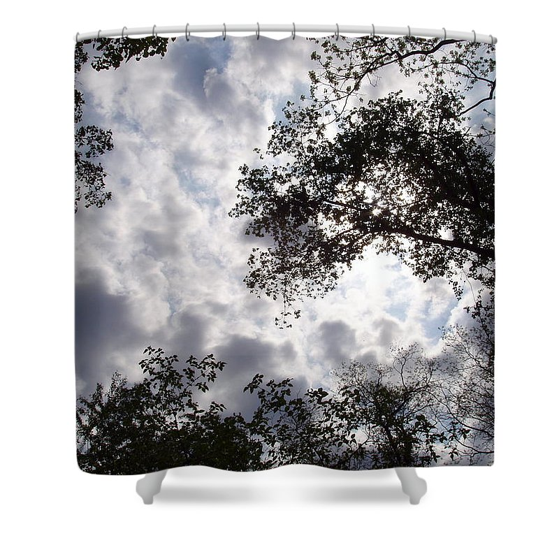 Tree Shower Curtain featuring the photograph Tree Swirl by Deborah Crew-Johnson