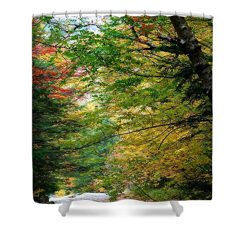 The Flume Shower Curtain featuring the photograph Trees Along The Flumes Trail by Catherine Gagne