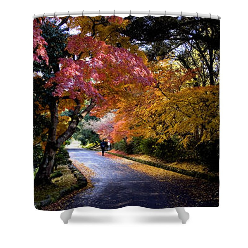 Trees Shower Curtain featuring the photograph Trees In Japan 1 by George Cabig
