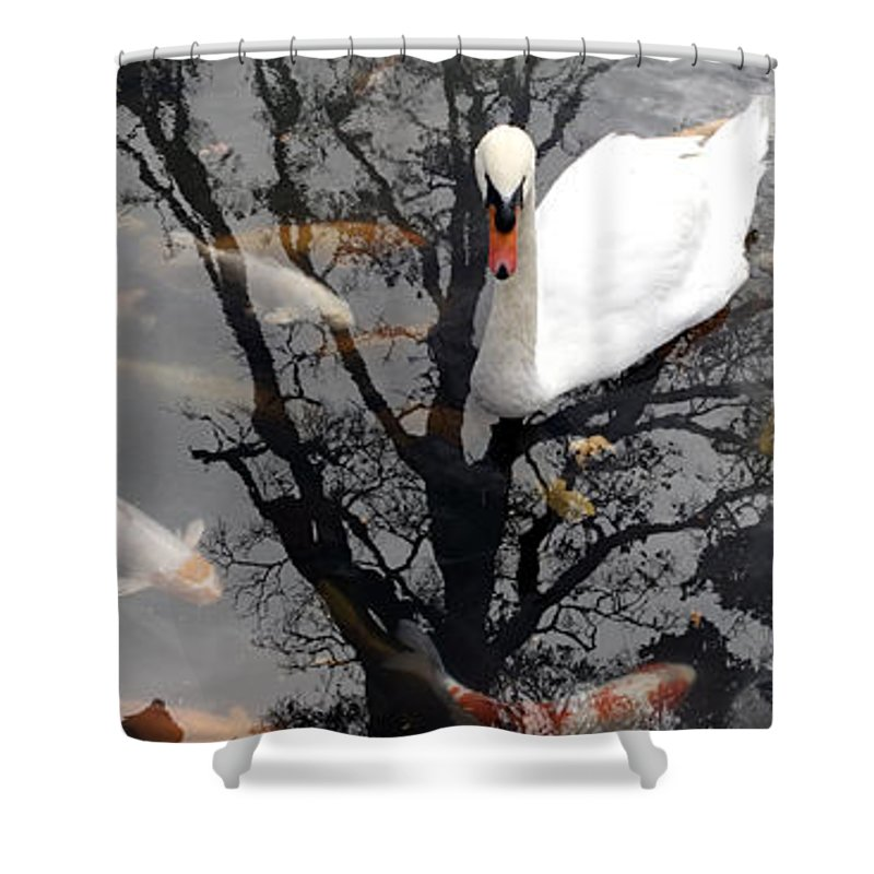 Water Shower Curtain featuring the photograph Trees In Japan 7 by George Cabig