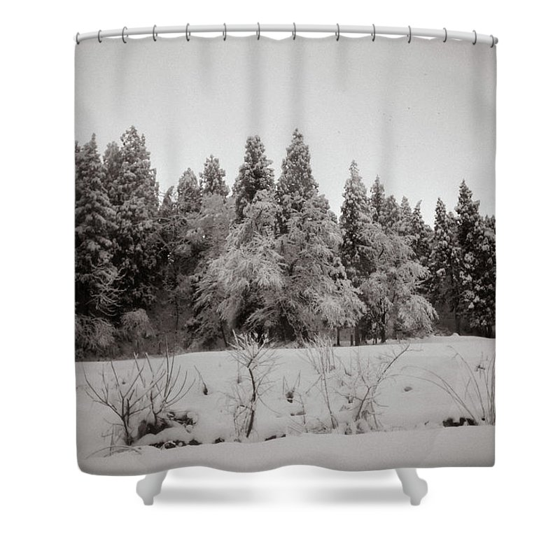 Snow Shower Curtain featuring the photograph Trees In Snow by Mike Agentis