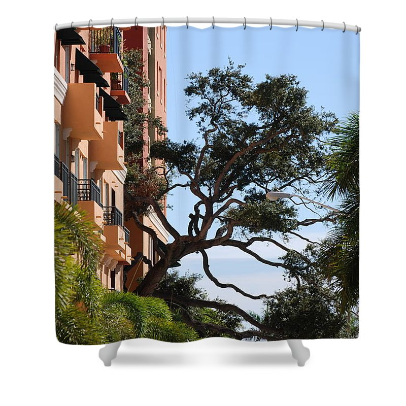 Architecture Shower Curtain featuring the photograph Trees In Space by Rob Hans