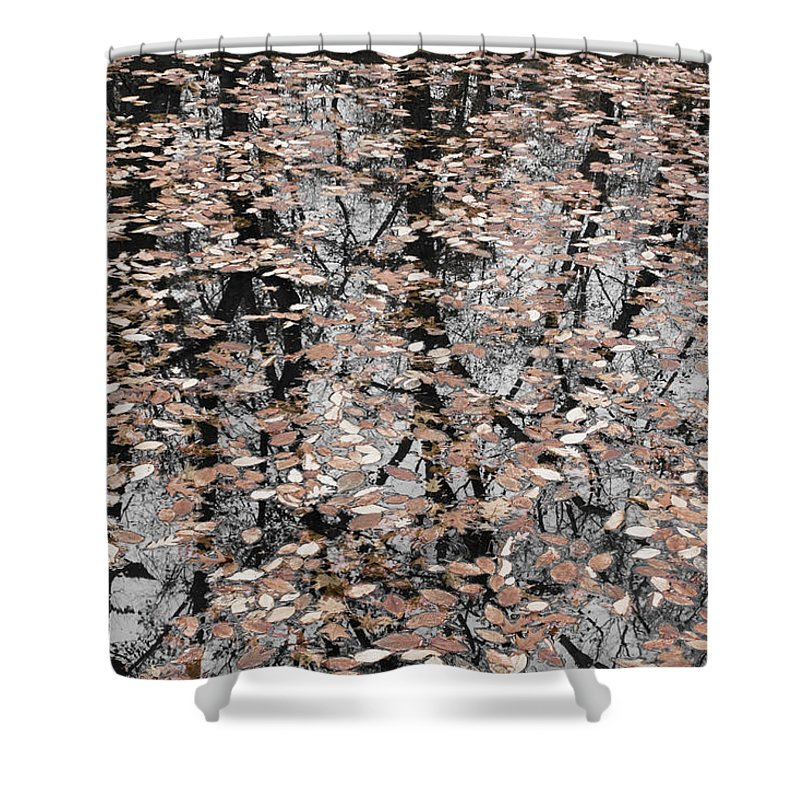 Trees Shower Curtain featuring the photograph Trees In The Leaves by Ayesha Lakes