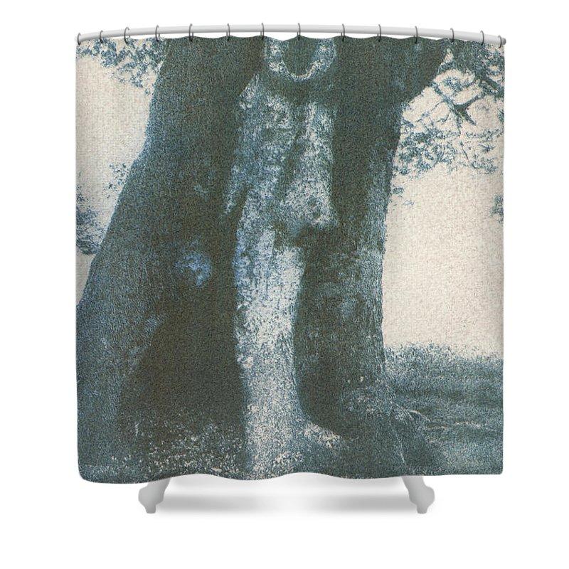 Gumprint Shower Curtain featuring the photograph Treespirit-1 by Casper Cammeraat