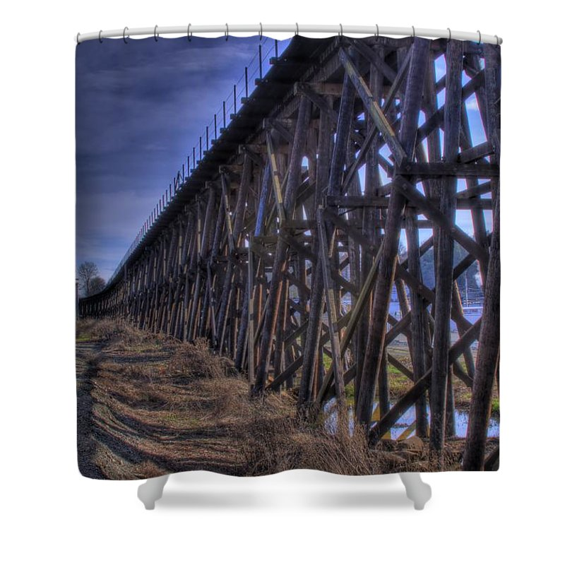 Tressel From The East Shower Curtain featuring the photograph Tressel From The East by David Patterson