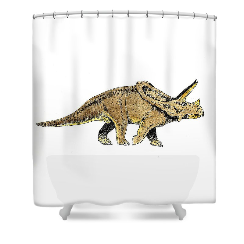 Dinosaur Shower Curtain featuring the painting Triceratops by Michael Vigliotti