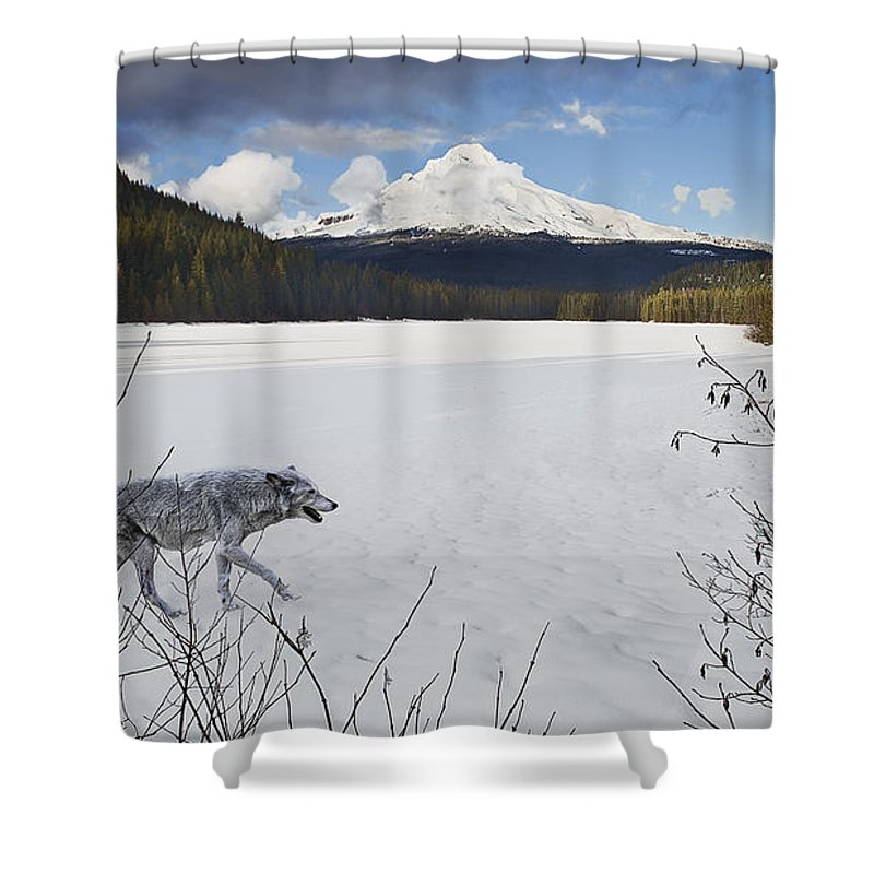 Snow Shower Curtain featuring the digital art Lone Wolf by John Christopher