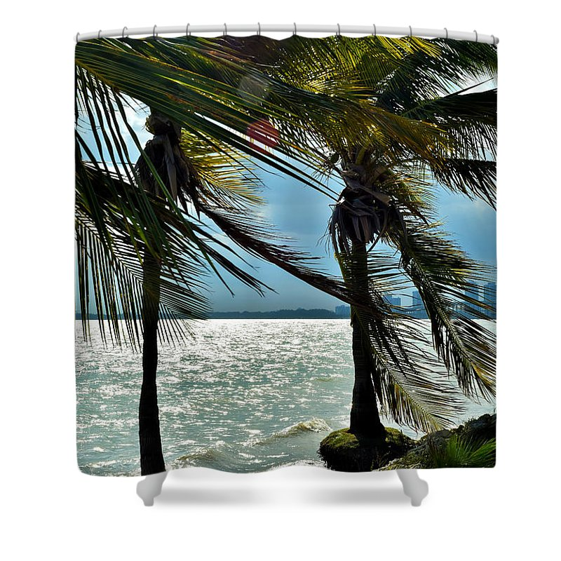 Palm Palm Tree Shower Curtain featuring the photograph Tropical Breeze by Camille Lopez