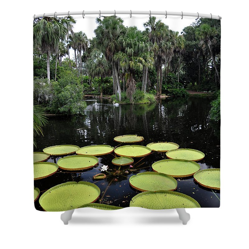 John Knapko Shower Curtain featuring the photograph Tropical Hopscotch by John Knapko