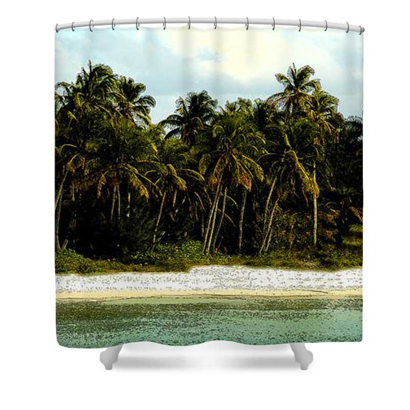 Tropical Shower Curtain featuring the painting Tropical Island by David Lee Thompson