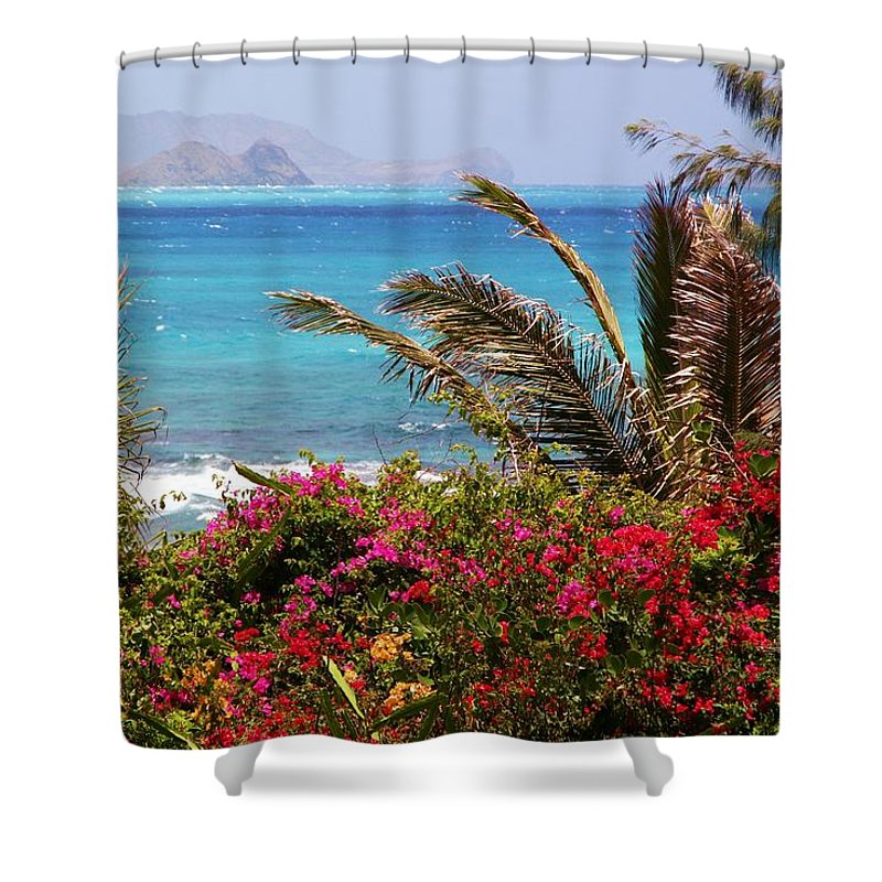 Tropical Shower Curtain featuring the photograph Tropical Paradise by Mitch Cat