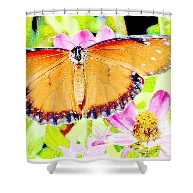 Soldier Butterfly Shower Curtain featuring the digital art Tropical Queen Butterfly, Soldier Butterfly by A Gurmankin