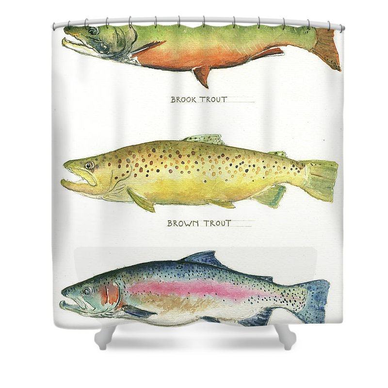 Brook Trout Shower Curtain featuring the painting Trout species by Juan Bosco