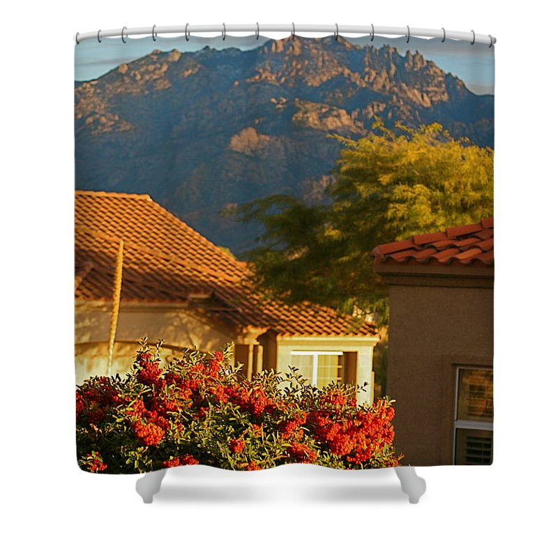 Mountains Shower Curtain featuring the photograph Tucson Beauty by Nadine Rippelmeyer