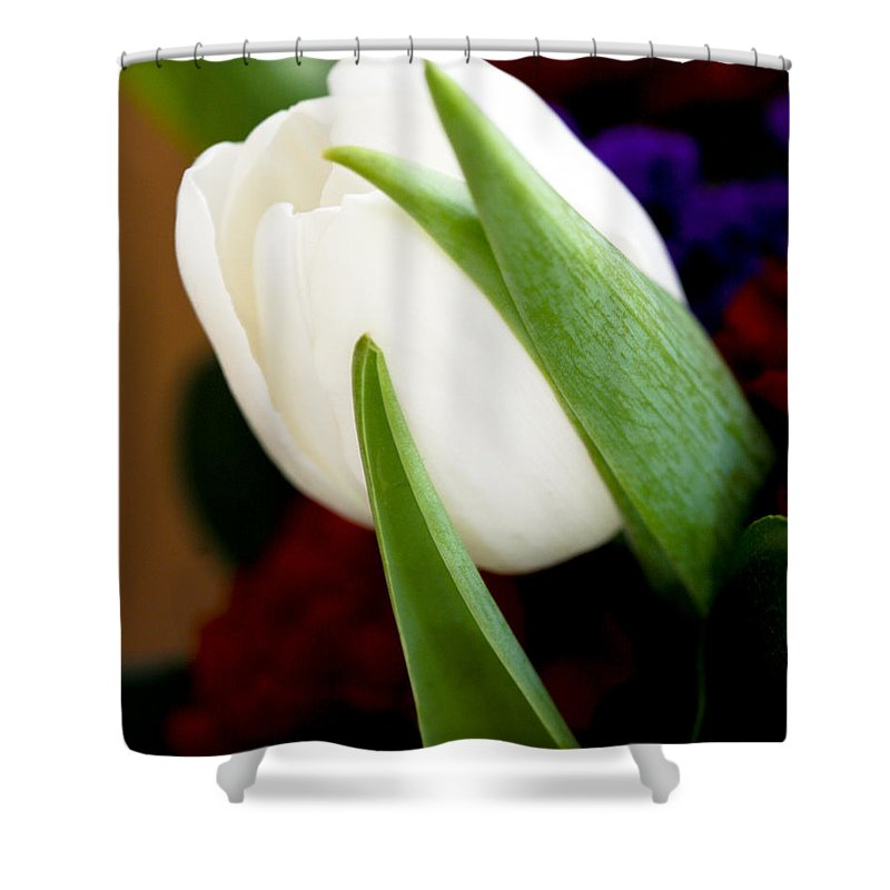Floral Shower Curtain featuring the photograph Tulip Arrangement 4 by Marilyn Hunt