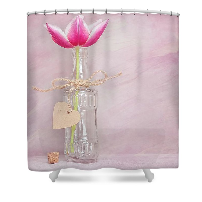 Flower Shower Curtain featuring the photograph Tulip In Bottle by FL collection