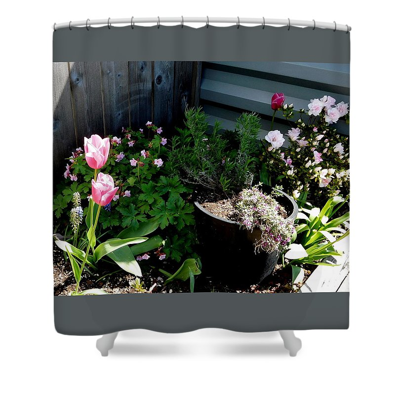 Scene Shower Curtain featuring the photograph Tulips And Bluebells by Maro Kentros
