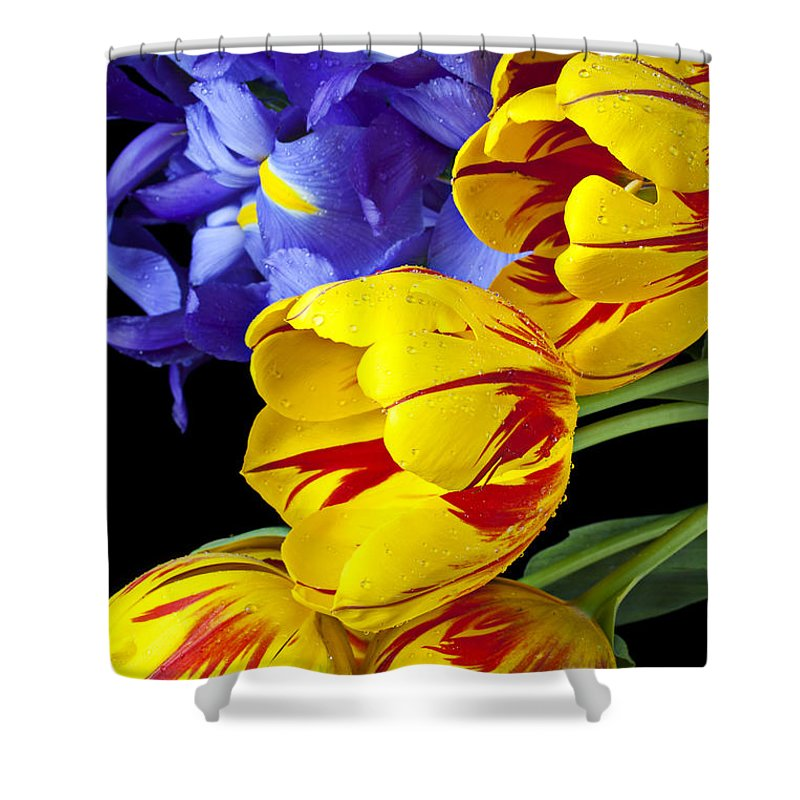 Yellow Shower Curtain featuring the photograph Tulips And Iris by Garry Gay
