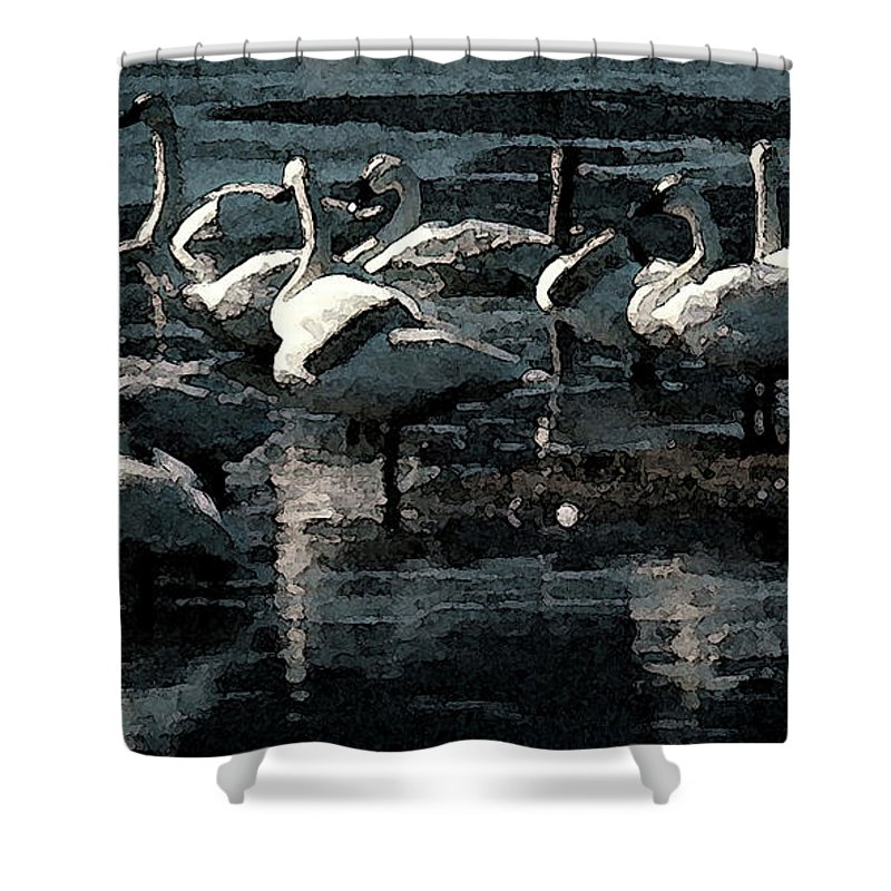 Birds Shower Curtain featuring the photograph Tundra Swans by Donna Brown