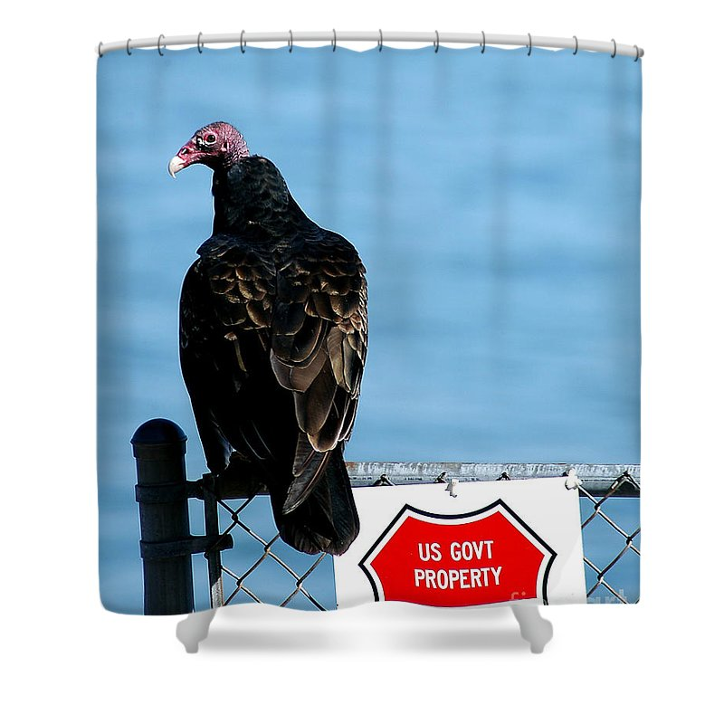 Clay Shower Curtain featuring the photograph Turkey Buzzard by Clayton Bruster