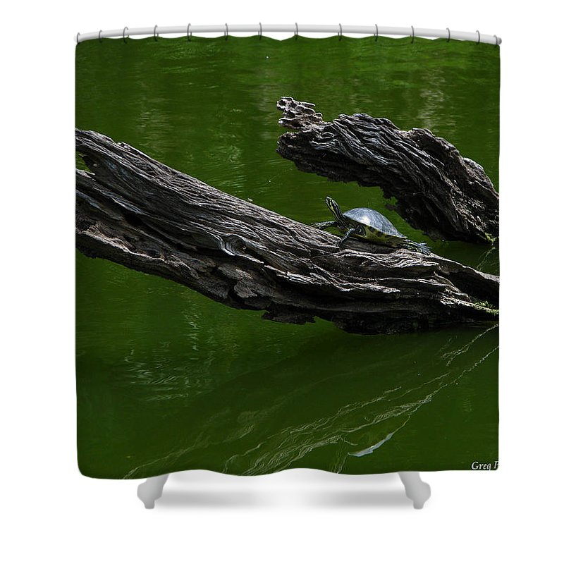 Art For The Wall...patzer Photography Shower Curtain featuring the photograph Turtle Art by Greg Patzer