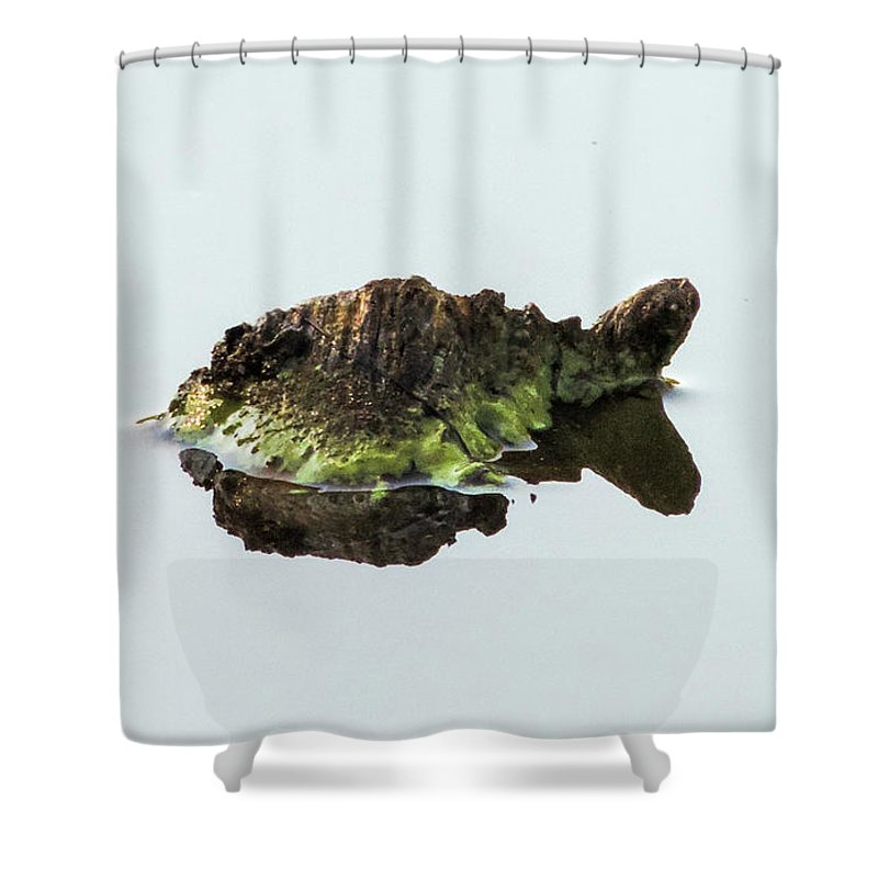 Turtle Shower Curtain featuring the photograph Turtle or Mountain by Randy J Heath