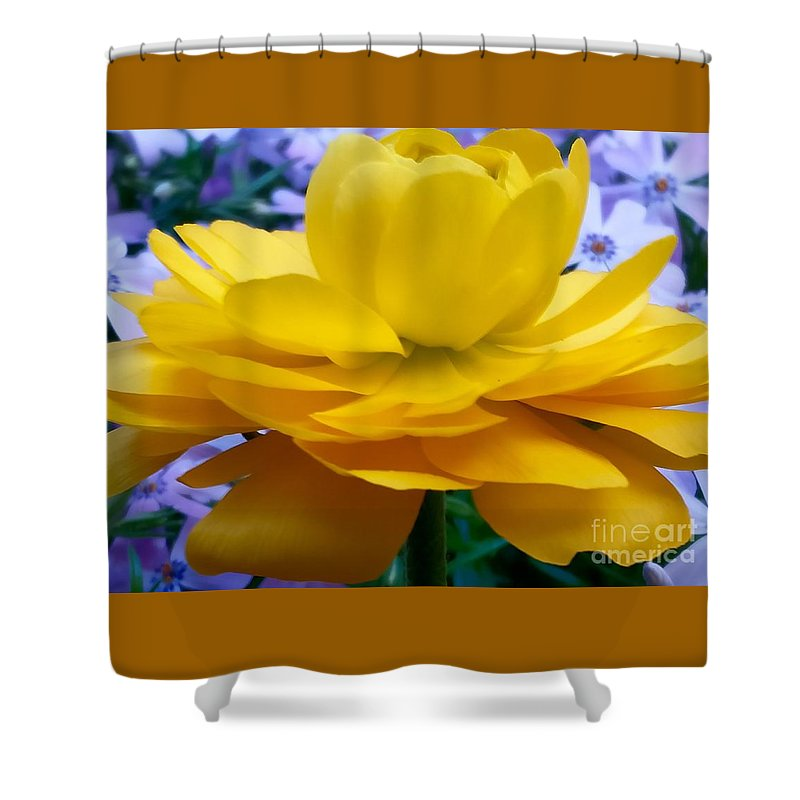 Fllowers Shower Curtain featuring the photograph Tutu by Mioara Andritoiu