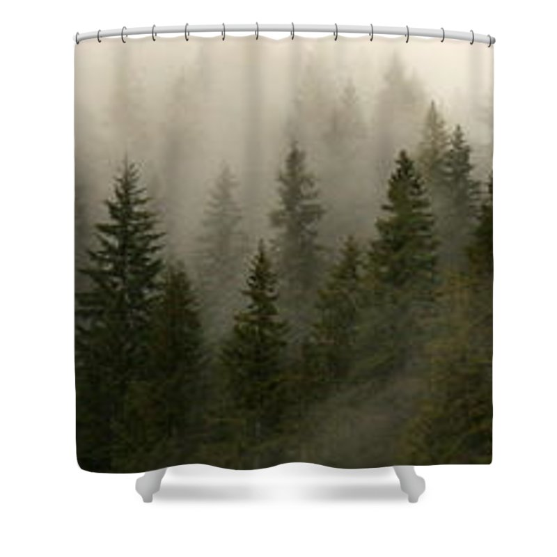 Forks Shower Curtain featuring the photograph Twilight Mist by Carol Groenen