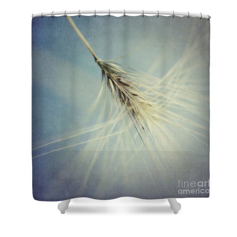 Barley Shower Curtain featuring the photograph Twirling by Priska Wettstein