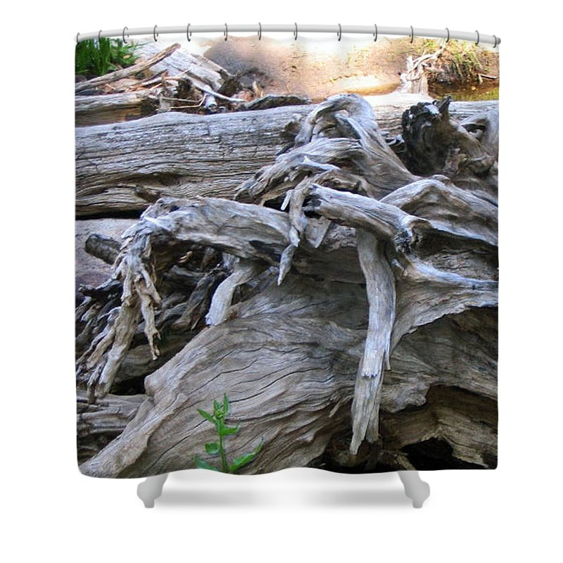 Landscape Shower Curtain featuring the photograph Twisted Fate by Dawn Marshall
