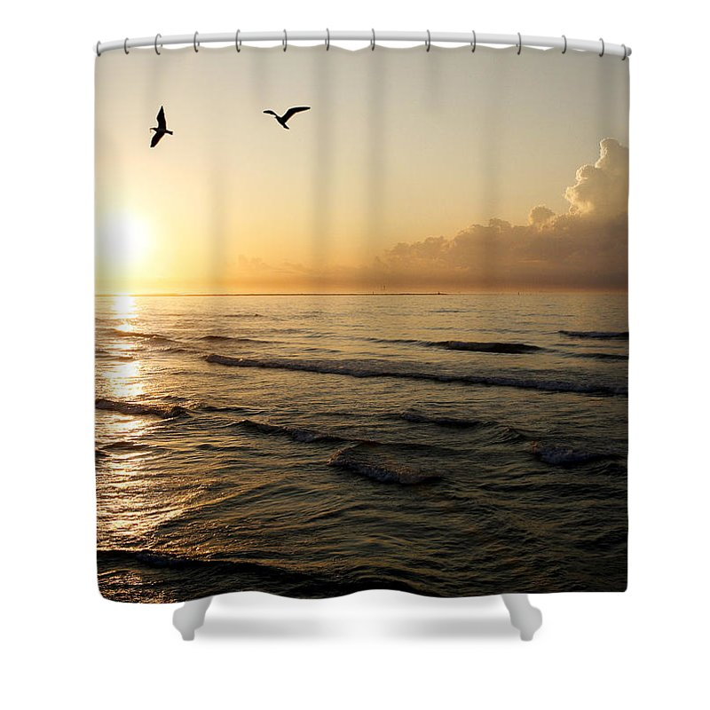Beach Shower Curtain featuring the photograph Two Birds At Breakast by Marilyn Hunt