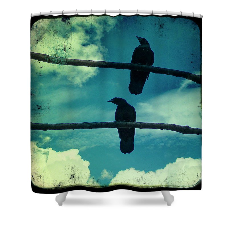 American Crow Shower Curtain featuring the photograph Two Crows Blue Lomo Sky by Gothicrow Images