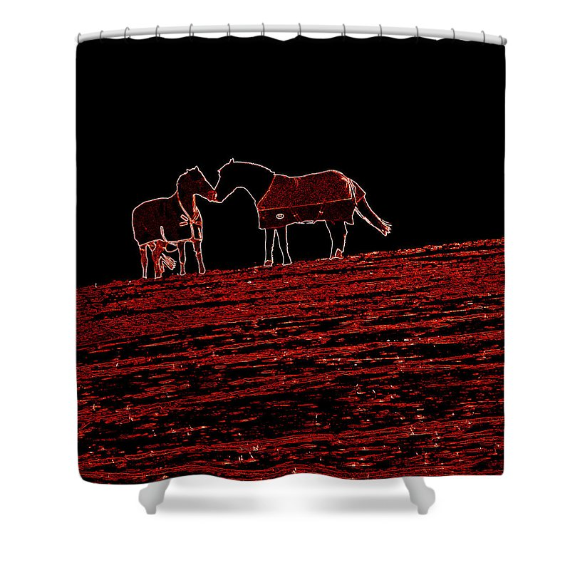 Horses Shower Curtain featuring the photograph Two Horses by James Hill
