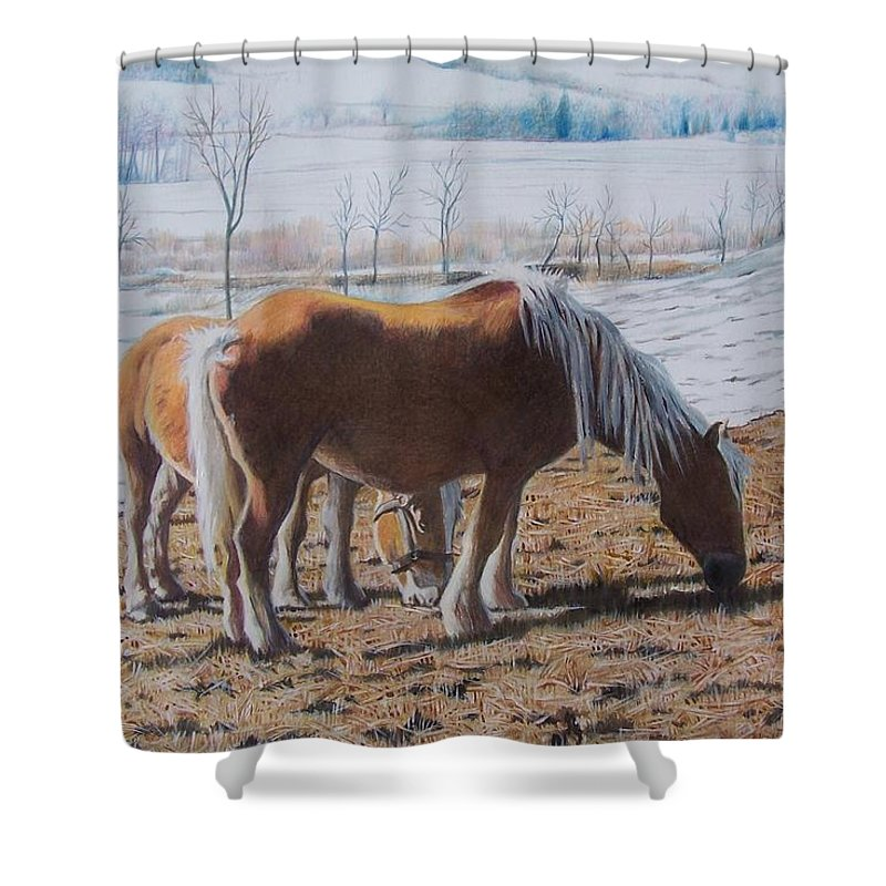 Horses Shower Curtain featuring the mixed media Two Ponies In The Snow by Constance Drescher