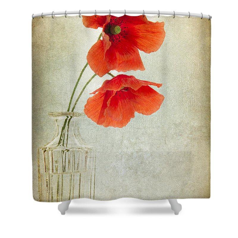 Poppy Shower Curtain featuring the digital art Two Poppies In A Glass Vase by Ann Garrett